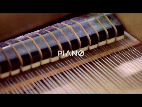Resonancias, la armonía del sonido: Piano