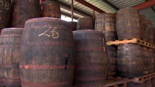 Making Rum at Angostura
