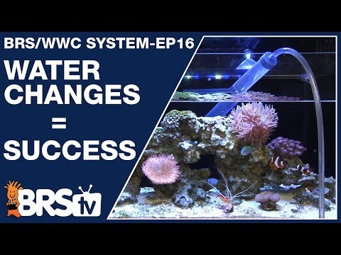 Ep16: How To Do Water Changes For A Dream Saltwater Tank? - The BRS/WWC System