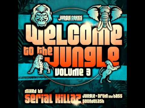 Sara Lugo - Really Like You ft. Protoje (Jamie Bostron Remix) (Jungle Cakes) (Dubwise D&B)