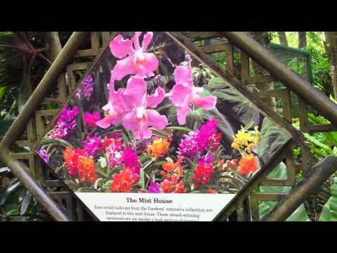 National Orchid Garden Singapore - Botanic Gardens