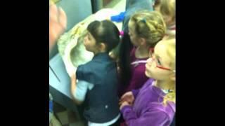 видео Экскурсии в Зоологический музей. Посещение Зоологического музея в Санкт Петербурге