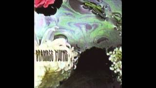 Siamese Twins - We Fall Apart