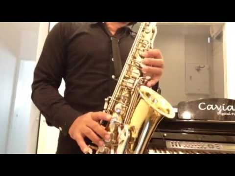 Selmer AS 300 Made in USA