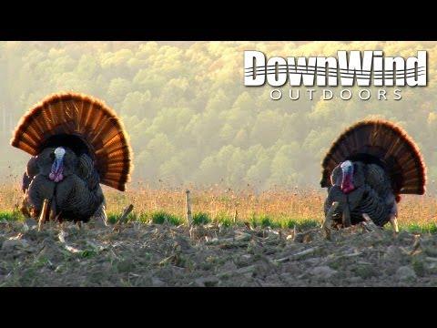 Eastern Turkey Hunting: Down in Smoke (DownWind Outdoors)