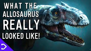 What The Allosaurus REALLY Looked Like?! - With Alteori