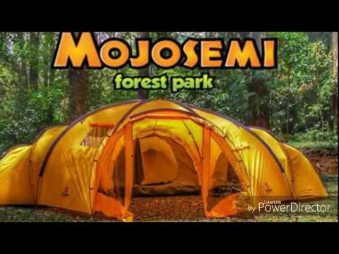 Wahana Wisata Mojosemi Forest Park Magetan Jawa Timur Youtube
