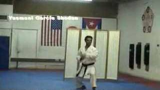 PINAN SANDAN Jyoshinmon Shorin Ryu Karate Do
