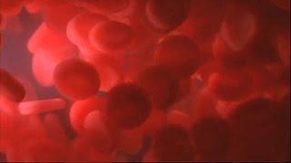 Gambar cover Blood Flow