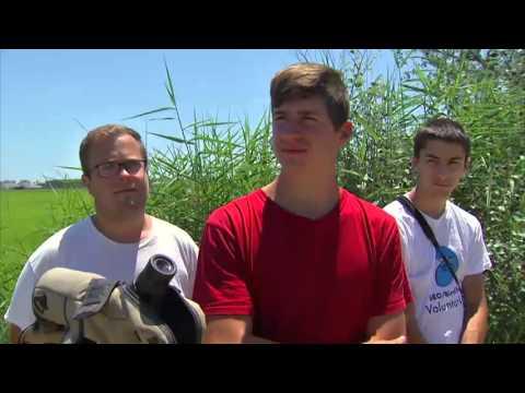 TV3 - Tocats de l'ala - El paradís