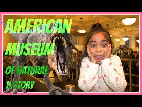 Visiting New York's American Museum Of Natural History / AMNH
