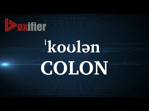 How to Pronunce Colon in English - Voxifier.com