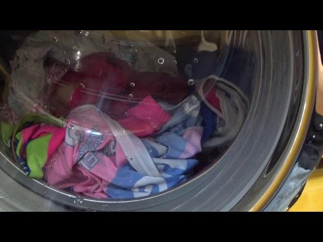 Wash-day, avvio lavaggio biancheria colorata Delicati freddo MIELE