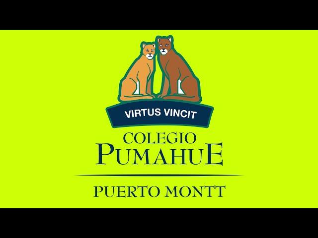 Proyecto Campur 7° Básico A - Pumahue Puerto Montt