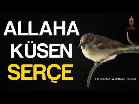 ALLAH'A KÜSEN SERÇE (İbretlik Muhteşem Öykü) - Dini Hikayeler