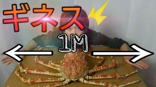 世界一巨大なカニを捌いて豪快に食す!【MonsterCrab】 【タカアシガニ】