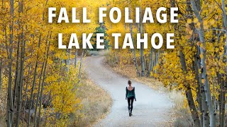 TOP Spots for Photographing Fall Colors in Lake Tahoe