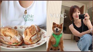 Vlog.  고독한 프리랜서 하루|바사삭 샌드위치|맥주…