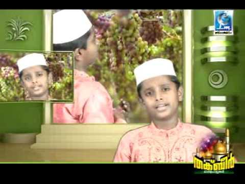 Vanil Virinja song Salman MSSA PTKL