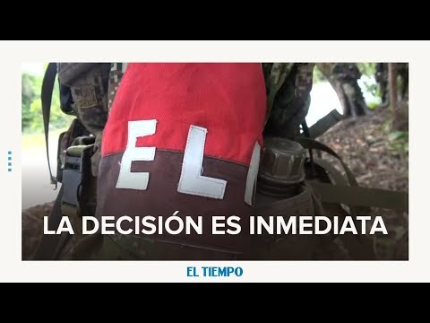 Ecuador suspende apoyo a negociación con el ELN | EL TIEMPO | CEET