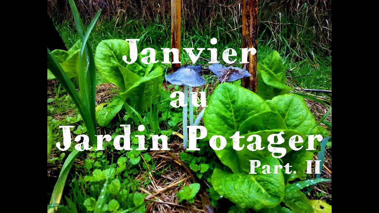 Le Jardin Potager En Janvier janvier au jardin potager - part.ii 🌳#23