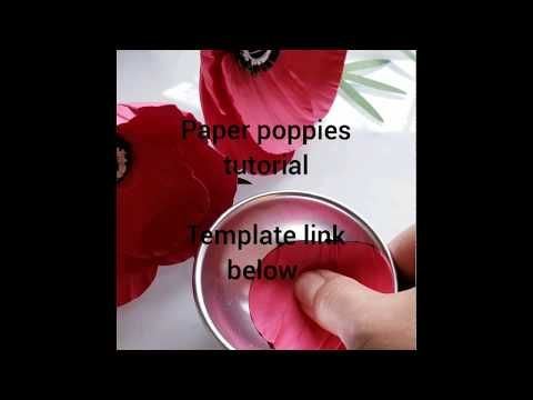 How to make paper poppies, DIY paper poppies
