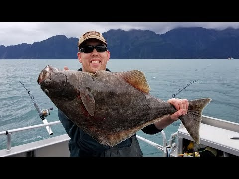 Alaska Adventure - Part 4  Fishing For Halibut, Salmon & Rock Fish