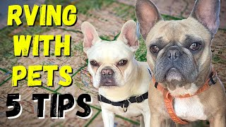 5 TIPS - RVING WITH DOGS | RV LIFE WITH OUR FRENCH BULLDOGS