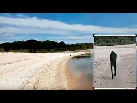 Turysta przepływa obok bezludnej wyspy i nagle podpływa do niego dziwne stworzenie!