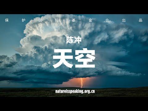 大自然在说话:陈冲 天空|保护国际基金会(CI)