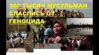 300 тысяч мусульман из Мьянма спаслись  в Бангладеше