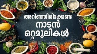 എല്ലാവരും അറിഞ്ഞിരിക്കണം ഈ ഒറ്റമൂലികൾ, Health Tips Malayalam