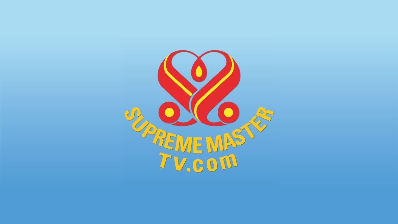 SupremeMasterTV Live 🎦