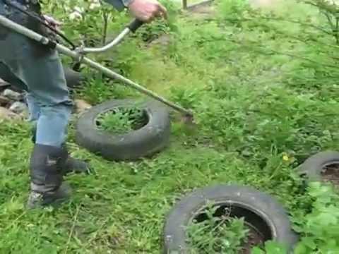 Семья Бровченко. Грядки из шифера и автомобильные покрышки - какую пользу приносят на огороде.