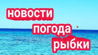 Шарм эль Шейх 2021 г Новости Погода Экскурсии работаем Под водой