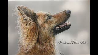 realistic fur with colored pencils on drafting film, drawing a dog again!