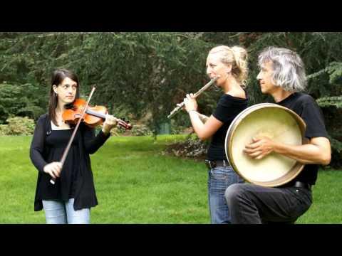 Traditional Irish Music ! Ghillie