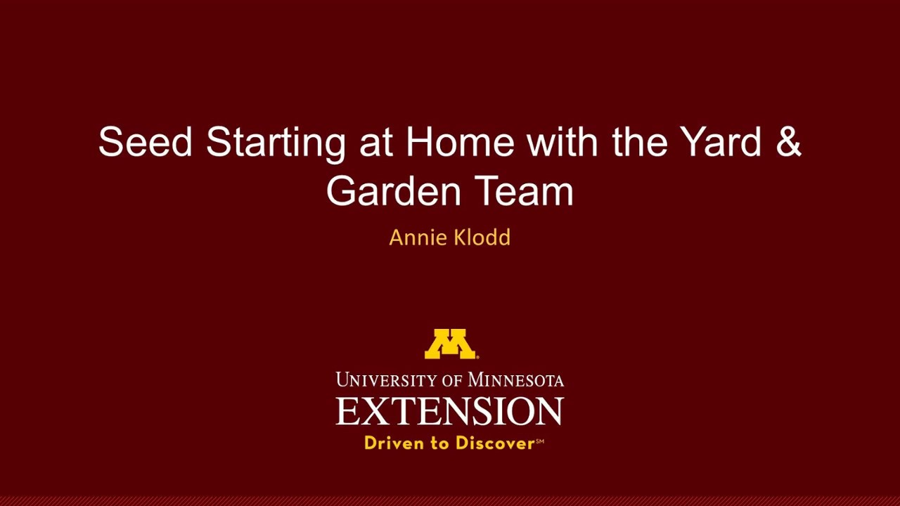 Starting Seeds At Home With The Yard And Garden Team Annie S Set