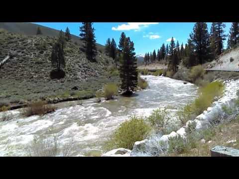 Little Walker River