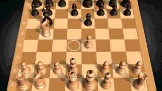Josh - Age 8 vs Dylan (Chessmaster Grandmaster Edition)