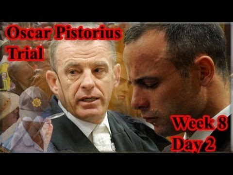 Oscar Pistorius Trial: Tuesday 13 May 2014, Session 2