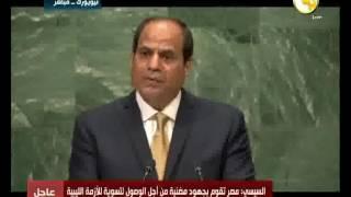 فيديو ـ السيسي: أمن الخليج العربي مرتبط بأمن مصر