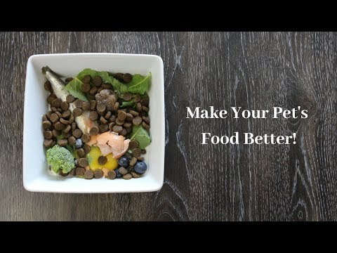 MAKE YOUR DOG'S FOOD BETTER (By Adding These Three Things)