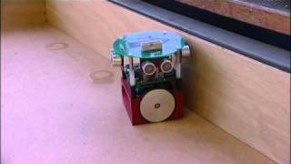 Robot with a Biological Brain
