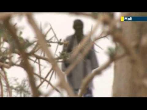 Sahara Jihad: UN special envoy warns Mali Islamist instability could spread to neighbours
