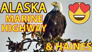 ⛴THE ALASKA MARINE HIGHWAY and Magical Haines 🦅(Getting Your RV Back to the Lower 48!)