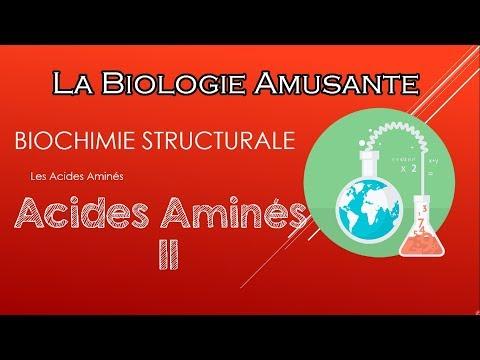 [s3]-biochimie-structurale-:-les-acides-aminés-  -partie-2-  