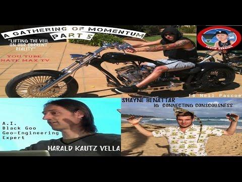 "A Gathering Of Momentum 5 ""Harald Kautz Vella, Shane Benattar, Neil Pascoe"