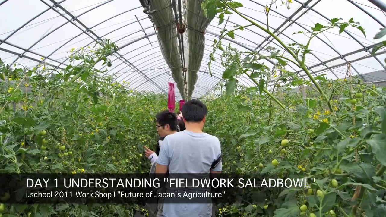 कृषि पेशामा जापान जान कति खर्च लाग्छ ?