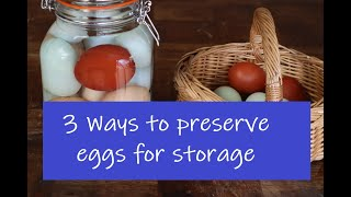 3 Ways to preserve eggs for food storage